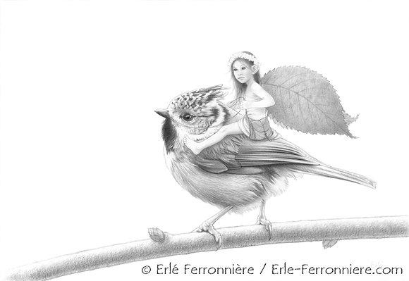 La fée et la mésange huppée (noir & blanc)