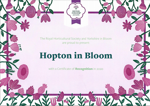 HIB Certificate of Recognition 2020.PNG