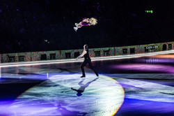 Art on Ice Show
