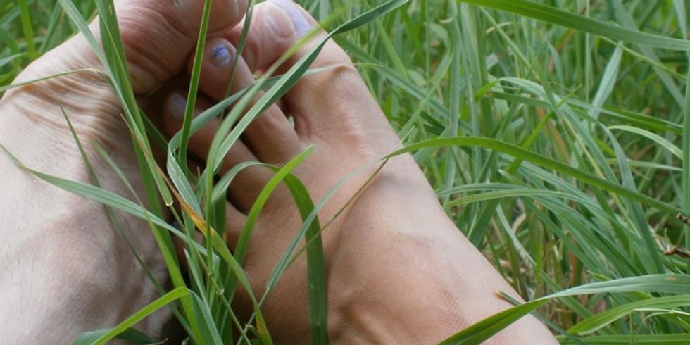 Workshop PZ massage Verdieping 24 augustus