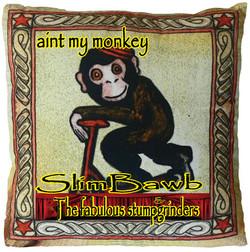 aint-my-monkey