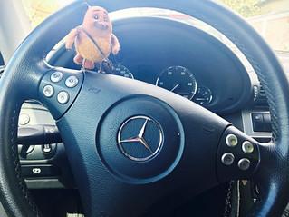PEEP learns to drive ...