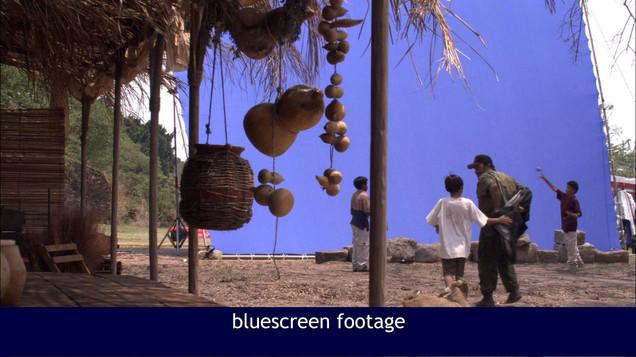 Bluescreen footage