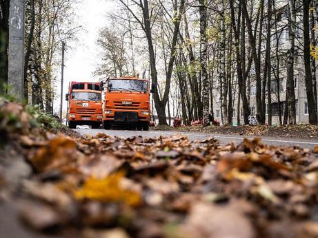 Более пяти тысяч кубометров листвы собрали в Солнечногорье с начала сезона