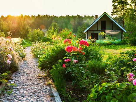 Солнечногорцы могут оформить садовый и жилой дом по «дачной амнистии» до марта 2021 года