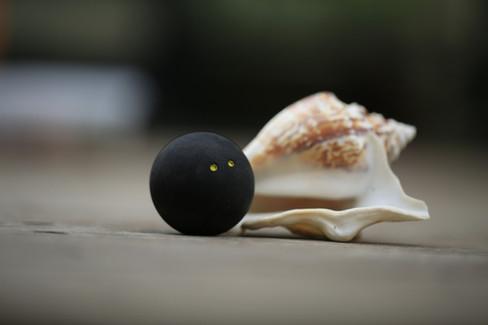 IMG-כדור מטקות 2 נקודות סקווש דנלופ