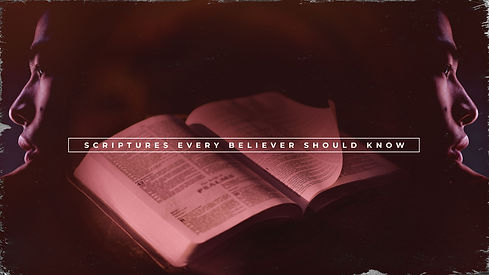 Words To Live By Scriptures Bible Photo