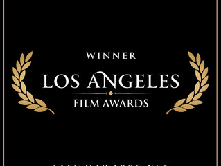 LA Film Awards Honors The Divide