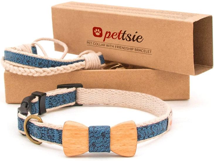 Collar premium para mascota + manilla