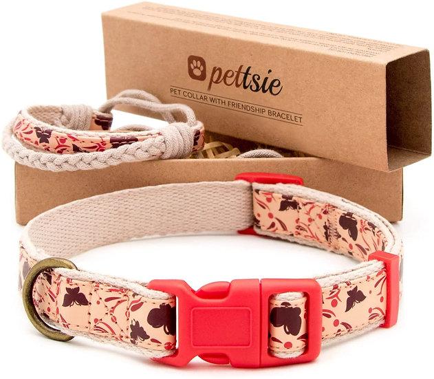 Collar premium para perro con manilla