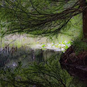 Fontaine à Saint-Cry