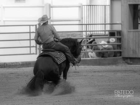Mes premières photos de reining