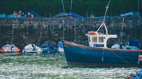 Tenby Fishing Trips