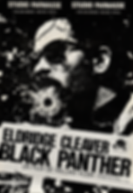 Eldridge Cleaver, Black Panther Movie Po