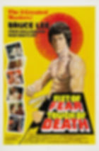 Fist of Fear, Touch of Death - Movie Poster
