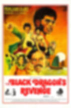 The Black Dragon's Revenge - Movie Poster
