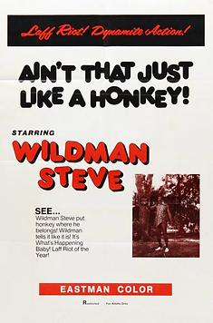 Ain't that Just Like A Honkey - Movie Po