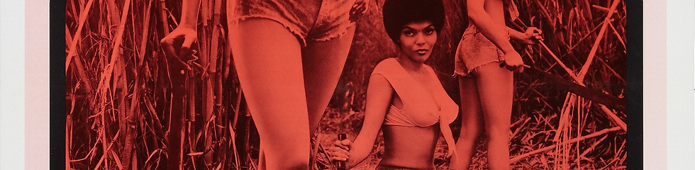 Sweet Sugar (1972) - COS Banner.png