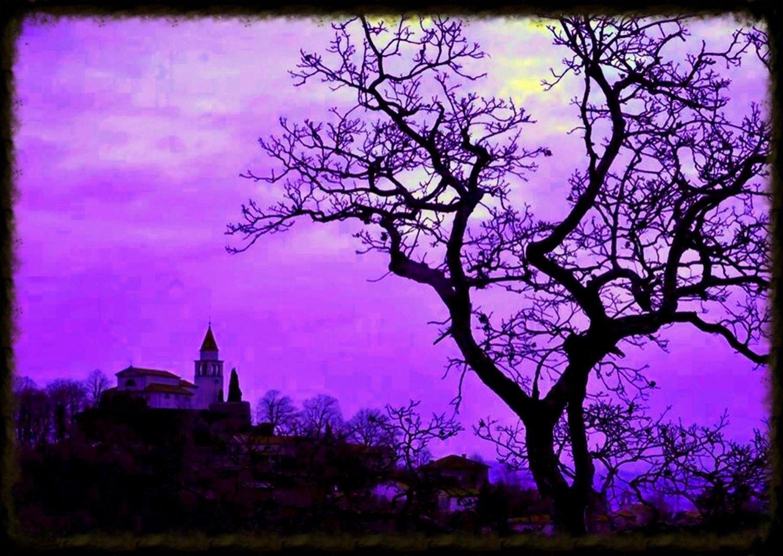 Edited Image 2014-1-24-13:36:54