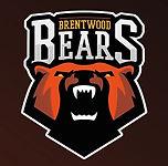 Bears_600x600.jpg