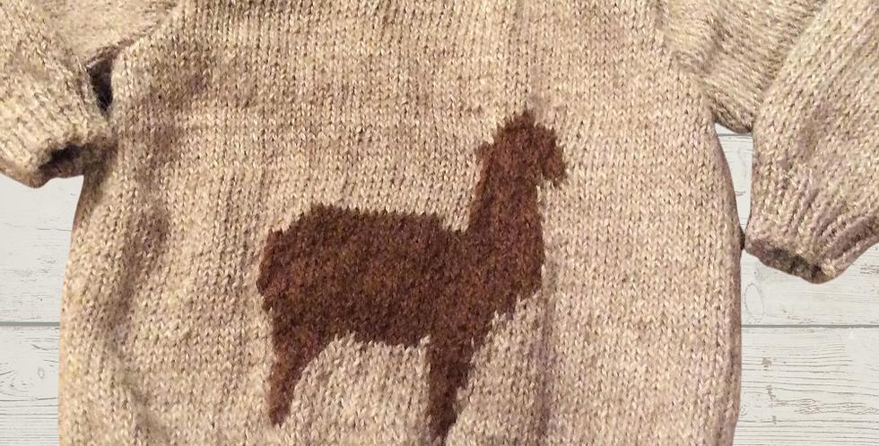 Kids Alpaca Jumper