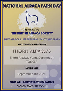 Thorn%2520Alpaca's_edited_edited.jpg