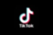 TikTok-Logo.wine.png