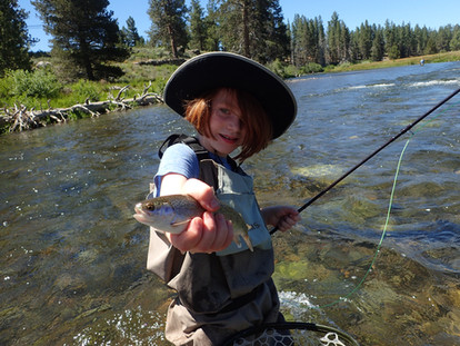 Rainbow Trout on the Truckee River