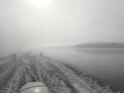 Fog on Stampede