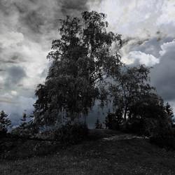 Burialmound- Sankthanshaugen 1