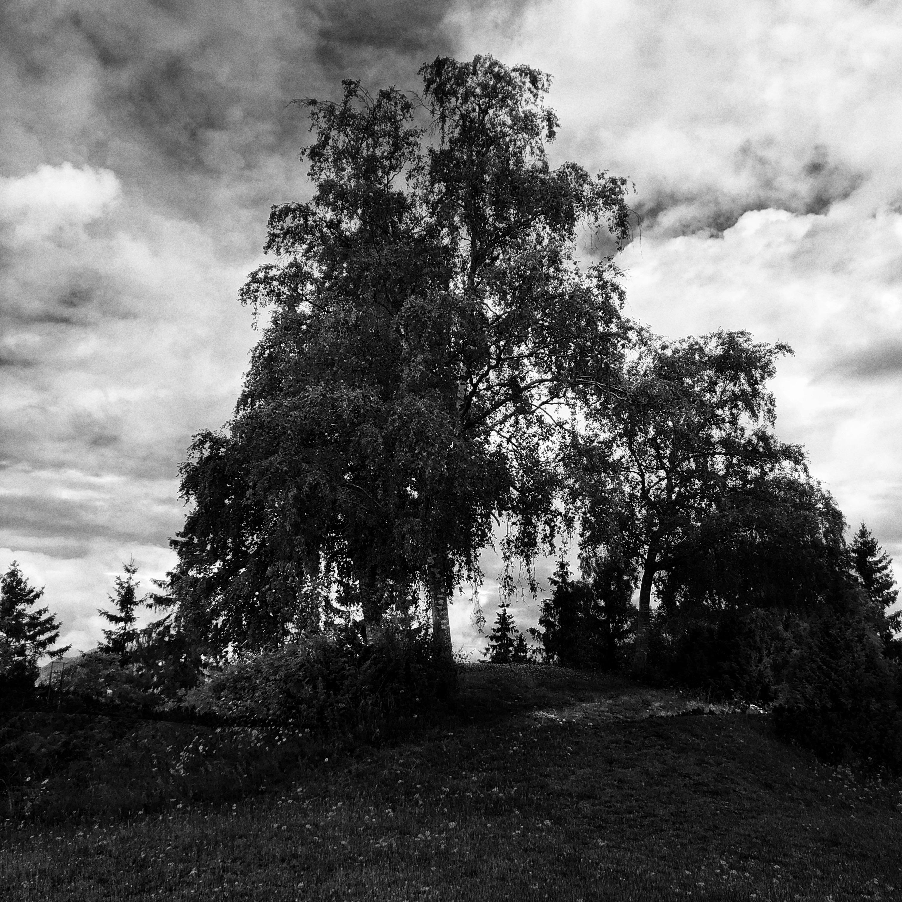 Burialmound- Sankthanshaugen 4