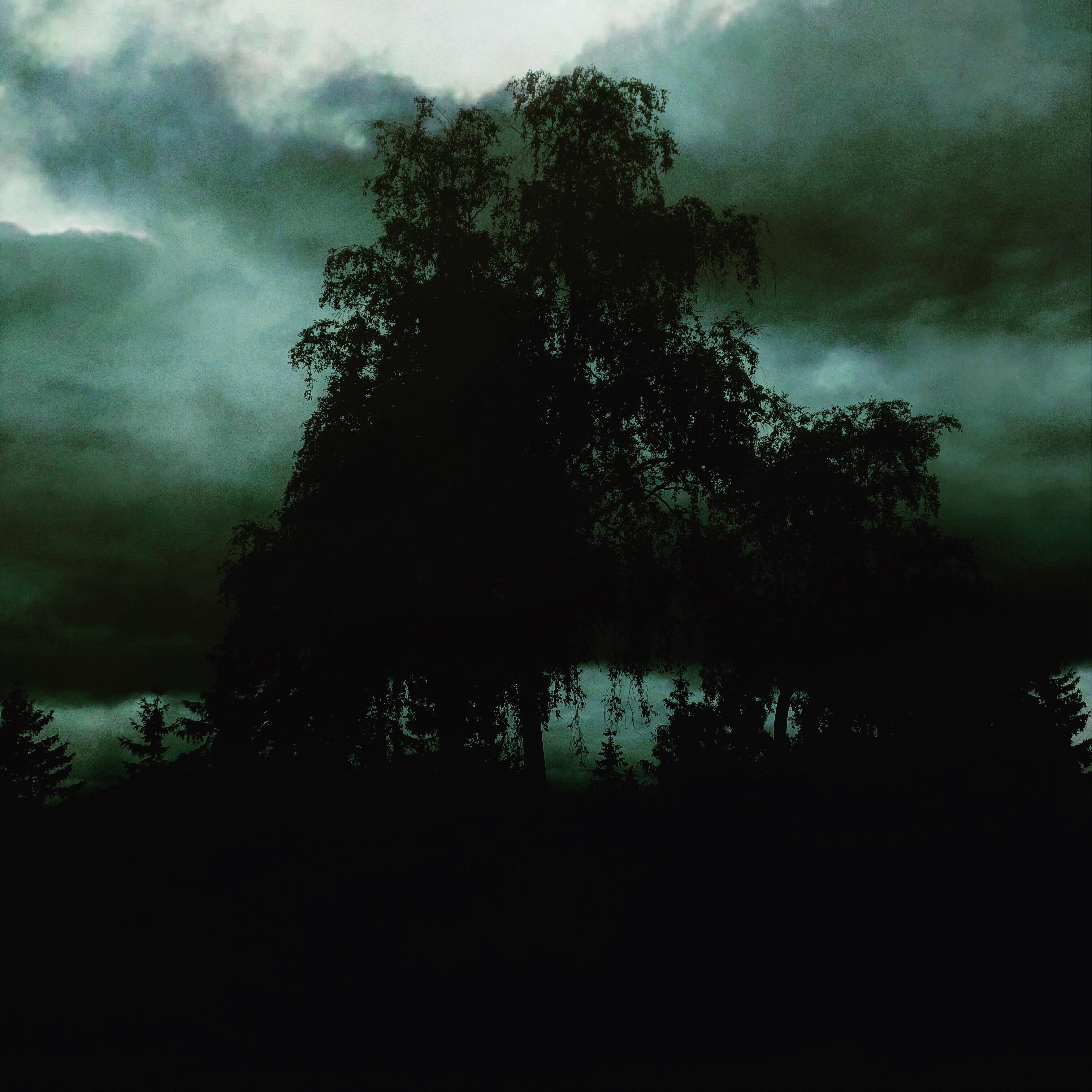 Burialmound- Sankthanshaugen 2