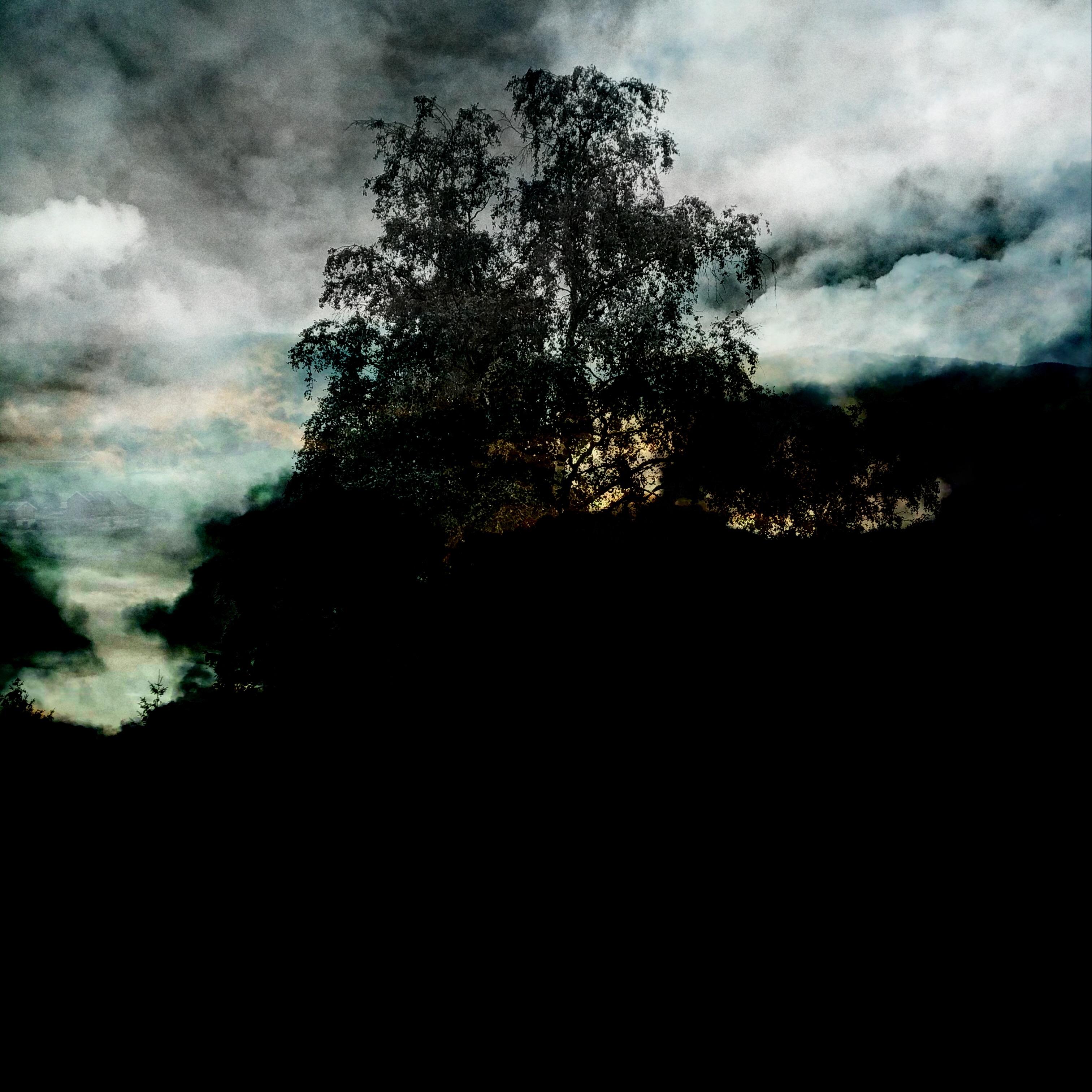 Burialmound- Sankthanshaugen 3
