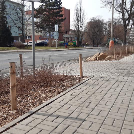 Osázení veřejného prostoru