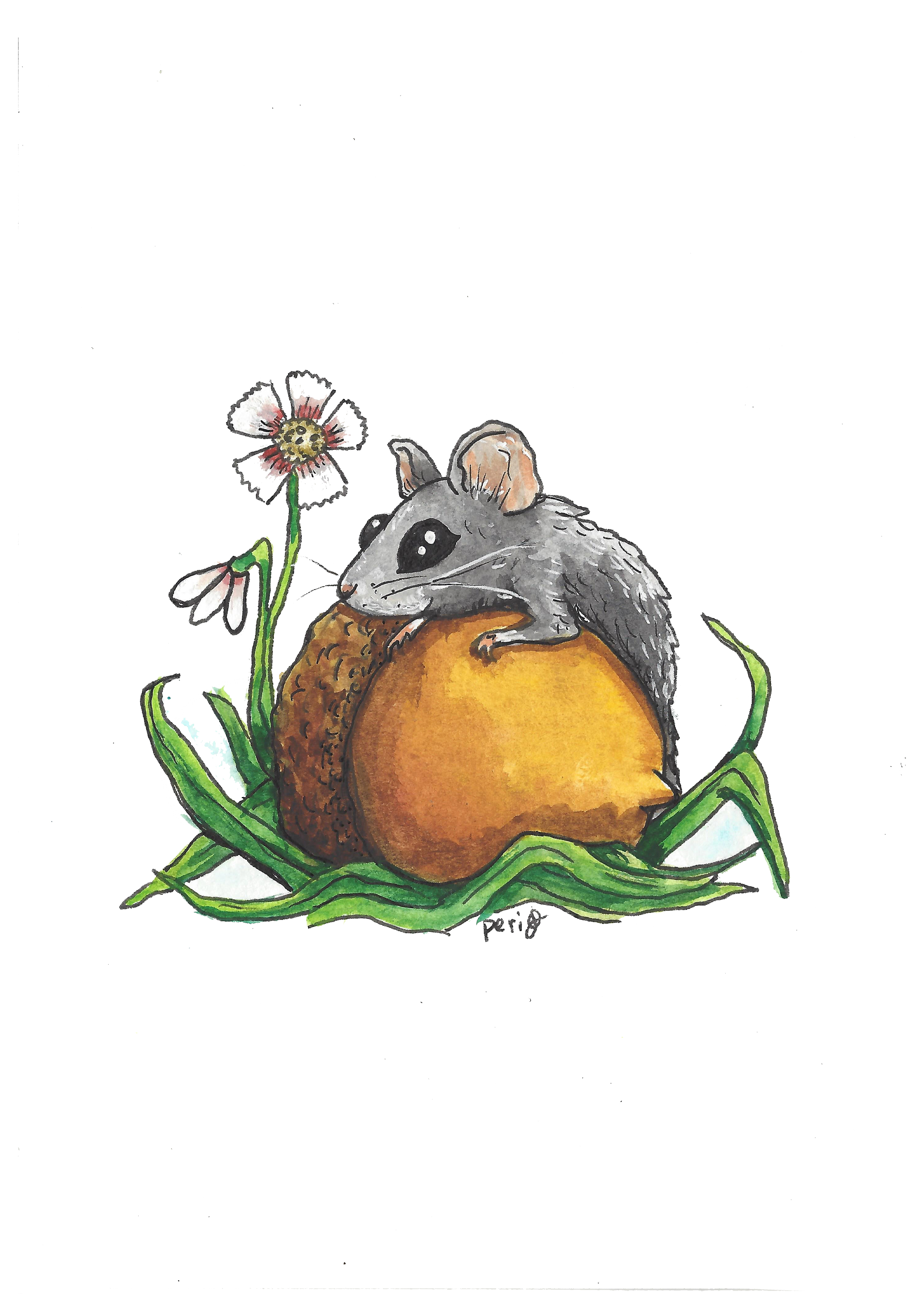 field mouse 5x7