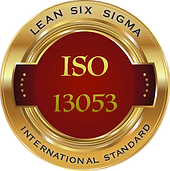 ISO13053 logo tiny PNG.png