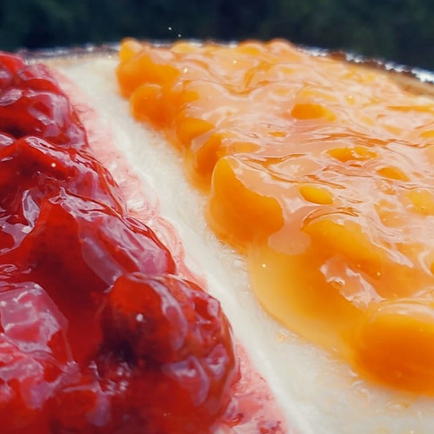 Strawberry Delight/Apricot Cheesecake
