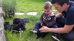 Sloan notre fils et les bébés