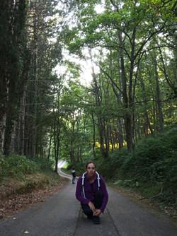 Floresta 1.jpg