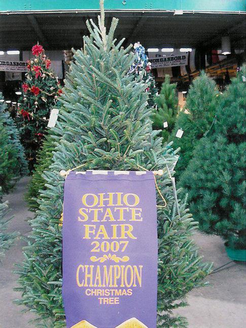 Ohio State Fair Tree.jpg