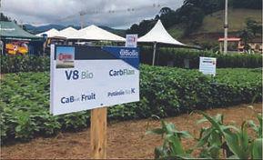 Banner Promocional BIOBIS.jpg