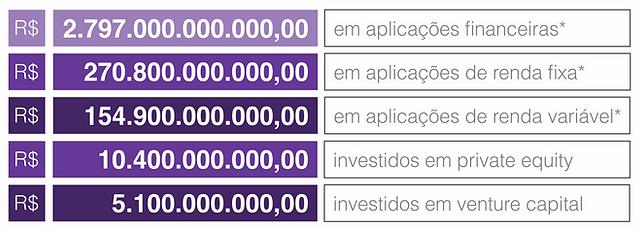pailnel brasileiro de investimentos.png