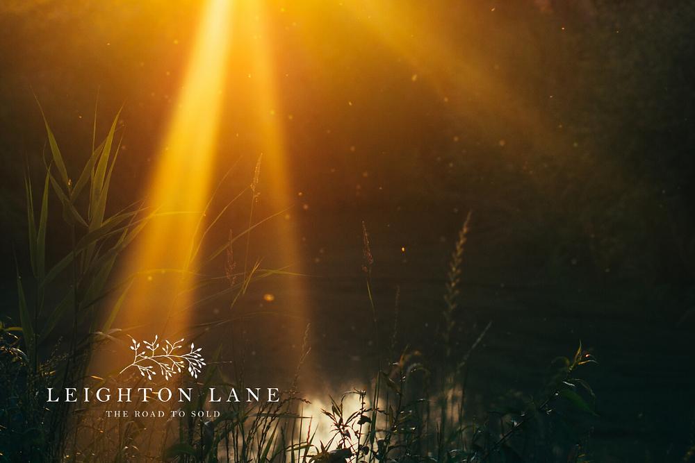 sunshine on a lake