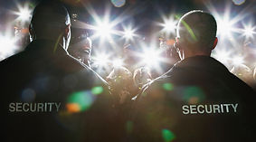 security officer, event safety, event security, party, festival