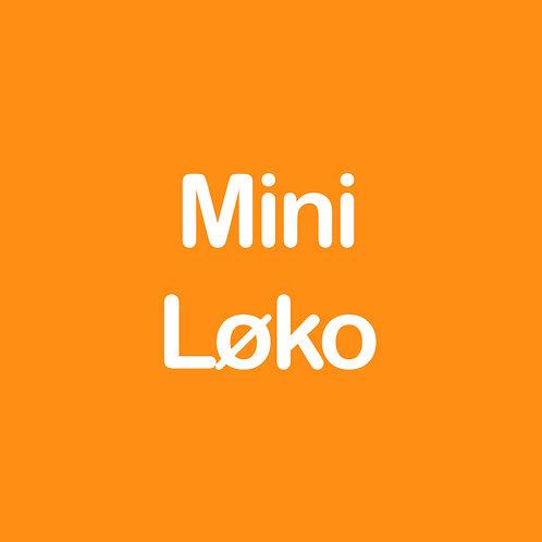 miniLØKO *Engelsk*