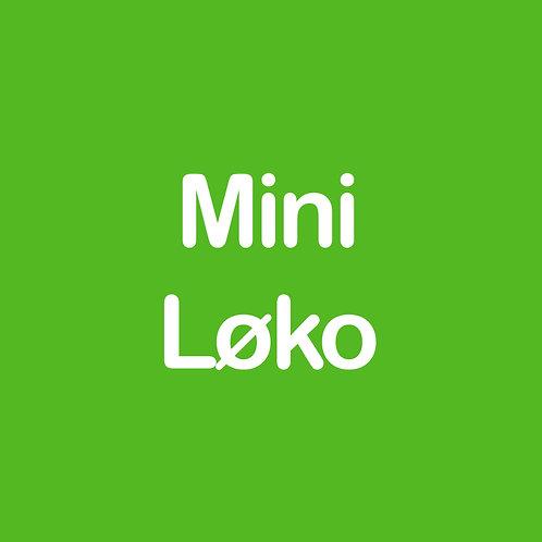 miniLØKO *Matematikk*