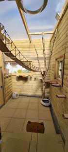 Espace extérieur 1 de Chez félins pour hôtes