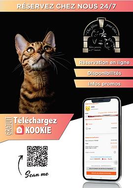 Kookie ap image PNG.png