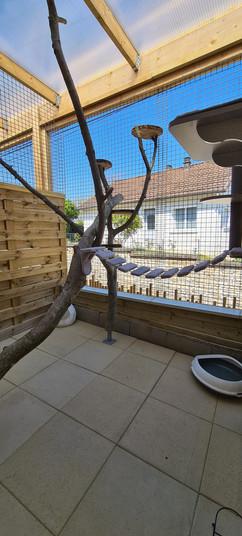 Espace extérieur 3 de Chez félins pour hôtes