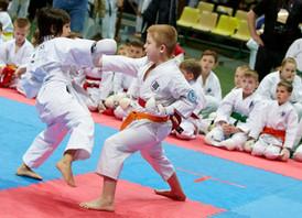 Турнир по каратэ среди школ Красногорского района